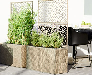 Tall natural coloured planter with trellis panel