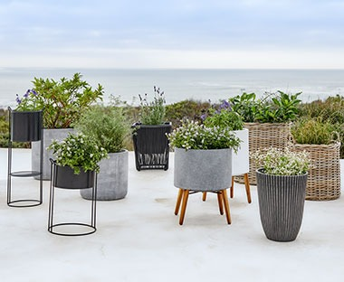 assorted garden planters in concrete, metal and wicker materials