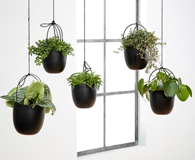 black hanging plants and pots
